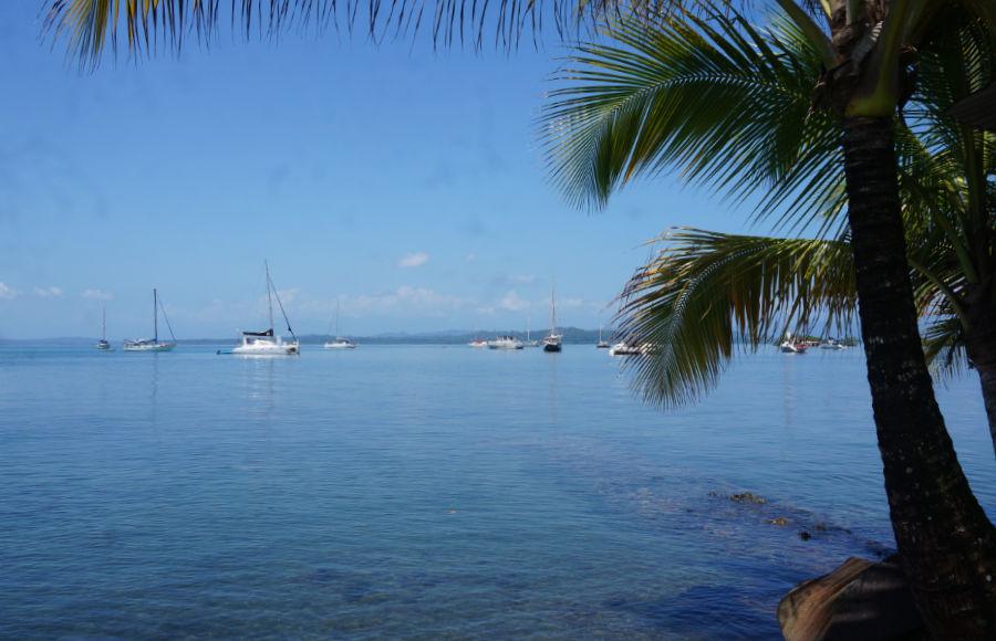 Bocas Del Toro Sailing Community